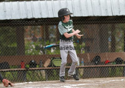 Minors-Green-2955