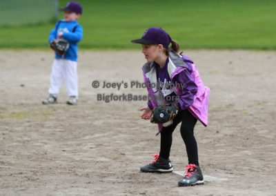 Tball-Purple-3034