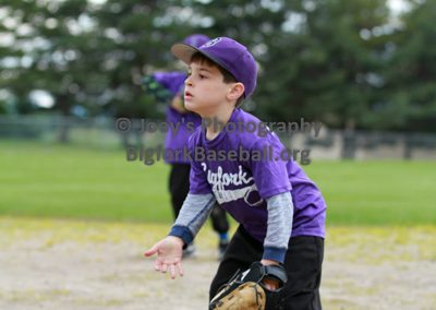 Tball-Purple-3036