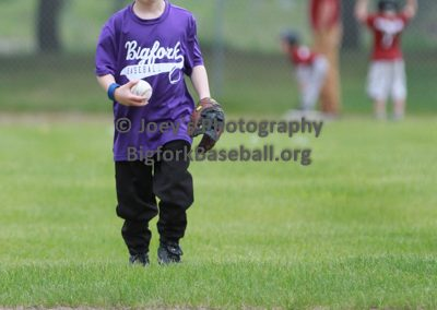 Tball-Purple-3043