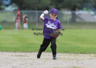 Tball-Purple-3044