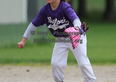 Tball-Purple-3060