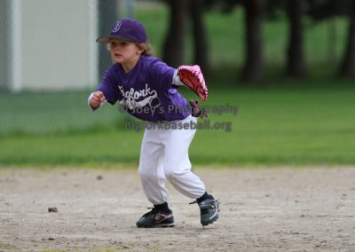 Tball-Purple-3061