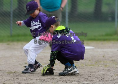 Tball-Purple-3062
