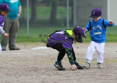 Tball-Purple-3063