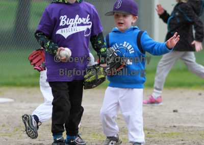 Tball-Purple-3065