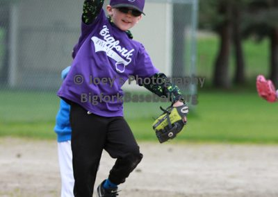 Tball-Purple-3068