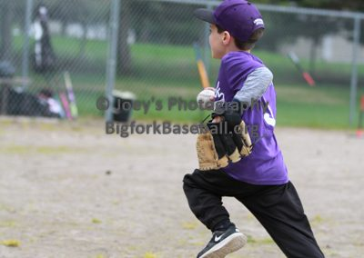Tball-Purple-3070