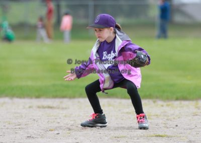 Tball-Purple-3073