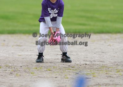 Tball-Purple-3076