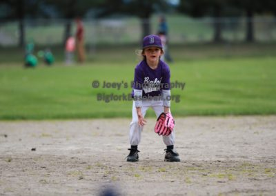 Tball-Purple-3083