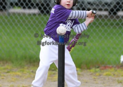Tball-Purple-3106