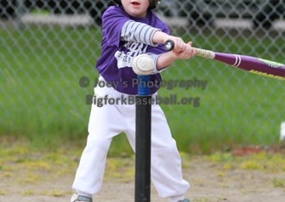 Tball-Purple-3107