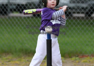 Tball-Purple-3110