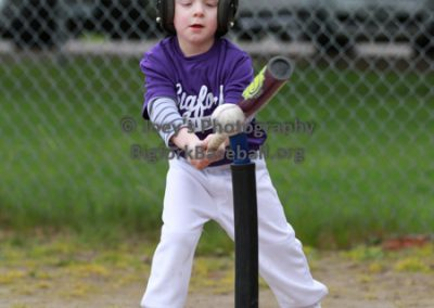 Tball-Purple-3111