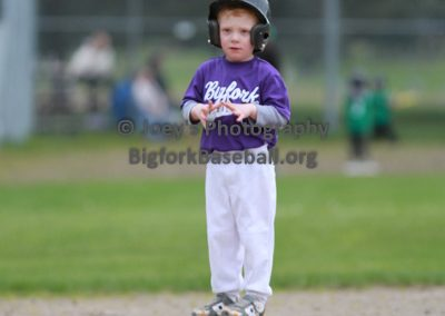 Tball-Purple-3142