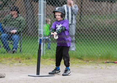 Tball-Purple-3144