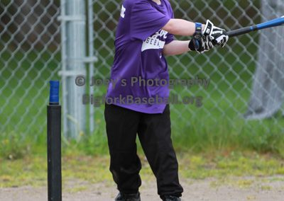 Tball-Purple-3152