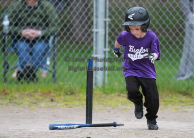 Tball-Purple-3155