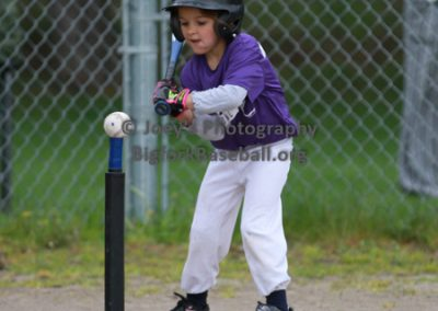 Tball-Purple-3159