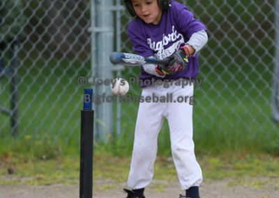 Tball-Purple-3160