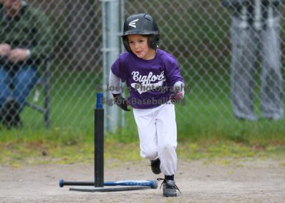Tball-Purple-3165