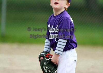 Tball-Purple-3186