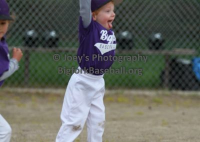 Tball-Purple-3195