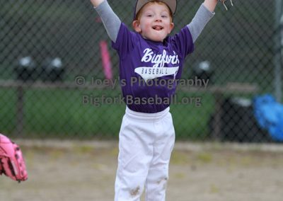 Tball-Purple-3196