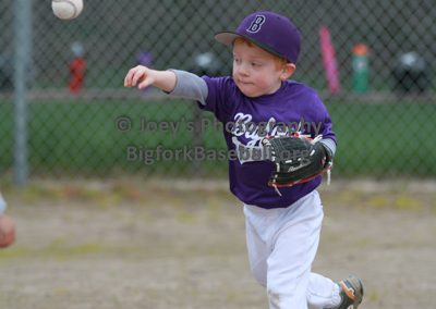 Tball-Purple-3199
