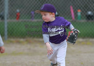 Tball-Purple-3200