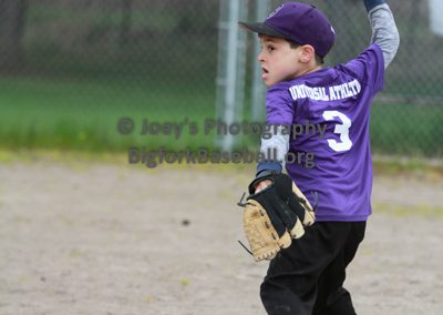 Tball-Purple-3212