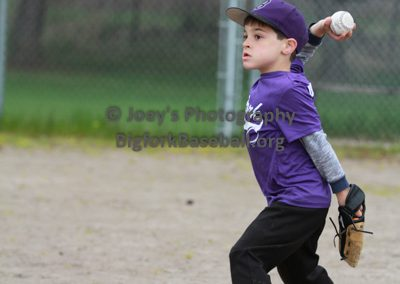 Tball-Purple-3214