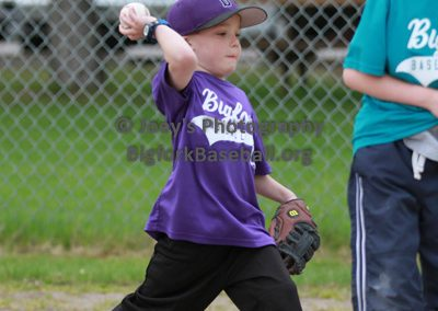 Tball-Purple-3244
