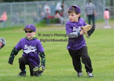 Tball-Purple-3256