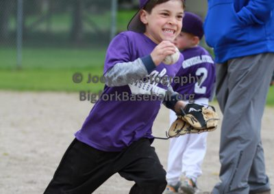 Tball-Purple-3262