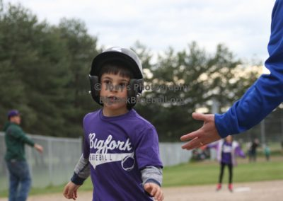 Tball-Purple-6374